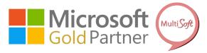 MS Gold Partner MultiSoft 2019